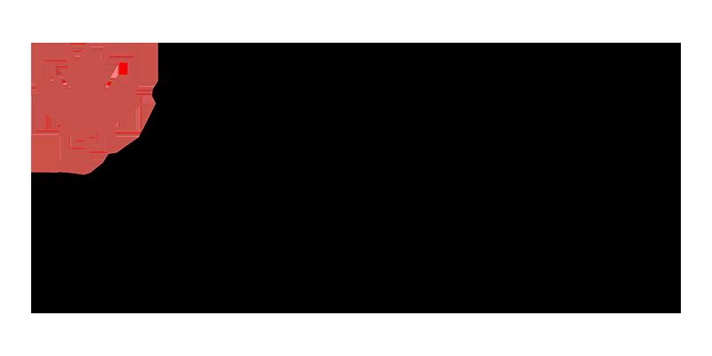 EDC 800x400